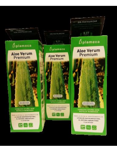 Aloe verum ( 3 uds.)